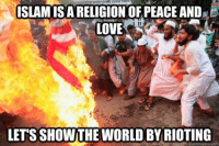 riot: ISLAMISAARELIGION OF PEACE AND E  LOVE  LETSSHOWTHE WORLD BY RIOTING  quick meme com