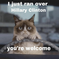 grumpy: I just ran over  Hillary Clinton  you're welcome