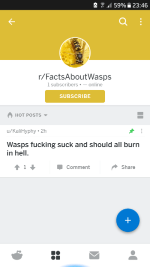 Meirl by KennySNES FOLLOW HERE 4 MORE MEMES.: 159% 23:46  r/FactsAboutWasps  1 subscribers-online  SUBSCRIBE  HOT POSTS  u/KaliHyphy 2h  Wasps fucking suck and should all burn  in hell.  Comment  Share Meirl by KennySNES FOLLOW HERE 4 MORE MEMES.