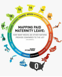 Spain, United, and Persimmon: 16  16  16  NETHERLAND  18  NCE SPAIN  MAPPING PAID  MATERNITY LEAVE:  HOW MANY WEEKS DO OTHER NATIONS  PROVIDE COMPARED TO THE US?  2  THINH  12  12  CANADAU  UNITED STA  50 murica  -adminotov