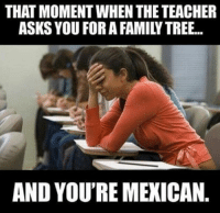 Teacher Memes: THAT MOMENT WHEN THE TEACHER  ASKS YOU FORA FAMILY TREE...  AND YOU'RE MEXICAN