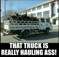 Hauling some serious ass there! : www.MexWordoftheDay.net  THAT TRUCK IS  REALLY HAULING ASS! Hauling some serious ass there!