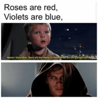 I'm having fun with Valentine's Day funnies    ~ Kylo: Roses are red  Violets are blue,  Master Skywalker, there are too many of them What are wegoingito do I'm having fun with Valentine's Day funnies    ~ Kylo