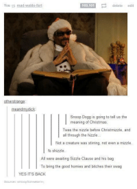 Bitch, Christmas, and Homie: 169,101  E delete  edit  You mad-waldo-art  otherstrange  meandmydick:  Snoop Dogg is going to tell us the  meaning of Christmas  Twas the nizzle before Christmizzle, and  all through the hizzle...  Not a creature was stirring, not even a mizzle.  fo shizzle  All were awaiting Sizzle Clause and his bag  To bring the good homies and bitches their swag  YES ITS BACK  Source: Snoop ionwearing sizzle clause
