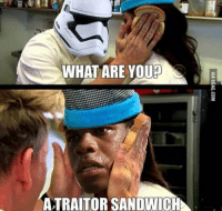 WHAT ARE YOUp  ATRAITOR SANDWICH Ok this is the best meme ever holy hell