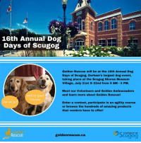 Memes, Good, and Today: 16th Annual Dog  Days of Scugog  Golden Rescue will be at the 16th Annual Dog  Days of Scugog, Durham's largest dog event,  taking place at the Scugog Shores Museum  Village, July 21st & 22nd from 9 AM -4 PM.  Meet our Volunteers and Golden Ambassadors  and learn more about Golden Rescue!  we'll be good  Promise  Can we go?  Enter a contest, participate in an agility course  or browse the hundreds of amazing products  that vendors have to offer!  den  Rescue  TOWNSHIP OF  goldenrescue.ca  Scugog **UPDATE: THIS EVENT HAS BEEN CANCELLED FOR TODAY**  We will be at the Annual Dog Days of Scugog TODAY! Stop by and see us at the Scugog Shores Museum Villiage 9am-4pm. Our Volunteers will be there to answer any questions and our Golden Ambassadors will gladly welcome a belly rub! #goldenretriever #rescuedog #adoptdontshop