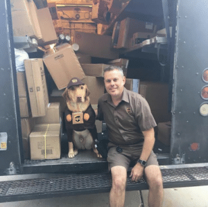 "ups-dogs: Hello,Below are pictures taken today of Walker helping our UPS driver Chad Bolskar deliver packages to our Emergency  Speciality Veterinary Hospital here in Waukesha, Wisconsin. Walker loves to see Chad and even helps carry the small boxes in. Walker donated blood today and was excited to ""suit up"" and help with today's shipment. Thanks and I hope to see him on the blog :) : 17  DEC ups-dogs: Hello,Below are pictures taken today of Walker helping our UPS driver Chad Bolskar deliver packages to our Emergency  Speciality Veterinary Hospital here in Waukesha, Wisconsin. Walker loves to see Chad and even helps carry the small boxes in. Walker donated blood today and was excited to ""suit up"" and help with today's shipment. Thanks and I hope to see him on the blog :)"