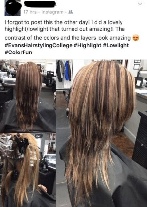 """Haircut, Instagram, and Tumblr: 17 hrs . Instagram .  I forgot to post this the other day! I did a lovely  highlight/lowlight that turned out amazing!! The  contrast of the colors and the layers look amazing  memehumor:  This haircut that """"turned out amazing!!"""""""