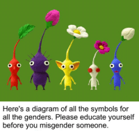 OC: O O O O  Here's a diagram of all the symbols for  all the genders. Please educate yourself  before you misgender someone OC