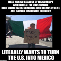 america meme: ANDINEFFECTIVEGOVERNMENT  HIGH CRIMERATESSKYROCKETING UNEMPLOYMENT  ANDRAPIDLYDISSOLVING ECONOMY  MAKE  AmeRiCA  LITERALYWANTSTO TURN  THE US INTO MEXICO  imgfip.com