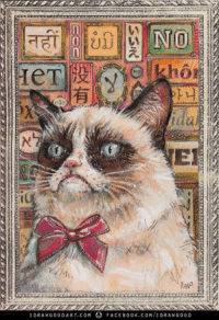Grumpy Cat. illustrated!  Tardar Sauce at her finest.  Share if you like (although I feel like you hate most everything). idrawgood Art: NO  IDRA W G o o DART. c o FACE B00 K.coM/IDRA, w G o o D Grumpy Cat. illustrated!  Tardar Sauce at her finest.  Share if you like (although I feel like you hate most everything). idrawgood Art