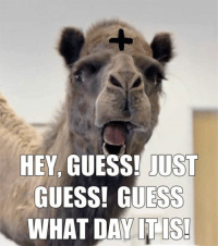 Wednesday, February 10th, is Ash Wednesday this year, the first day of Lent.: HEY,  GUESS! JUST  GUESS! ESS  WHAT DAY IT IS! Wednesday, February 10th, is Ash Wednesday this year, the first day of Lent.