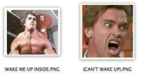 wake me up: WAKE ME UP INSIDE, PNG  (CAN'T WAKE UP) PNG