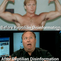 Reptilian: Before Reptilian Disinformation  After Reptilian Disinformation