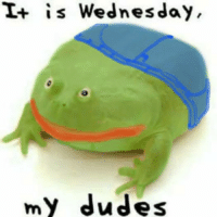 spent way too long on this: T+ is Wednesday,  my dudes spent way too long on this