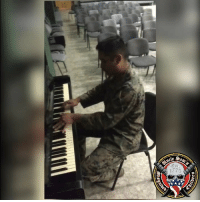 USMarines can chew gum, play piano and take out evil dictators world wide! SHARE THIS TALENTED LEATHERNECK! USMC Music Piano: 1773 USMarines can chew gum, play piano and take out evil dictators world wide! SHARE THIS TALENTED LEATHERNECK! USMC Music Piano