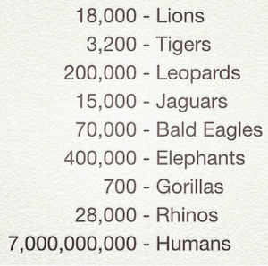Bailey Jay, Philadelphia Eagles, and Tumblr: 18,000 Lions  3,200- Tigers  200,000 Leopards  15,000 Jaguars  70,000 Bald Eagles  400,000 Elephants  700 Gorillas  28,000 Rhinos  7,000,000,000 Humans epicjohndoe:  The World Is Unfair