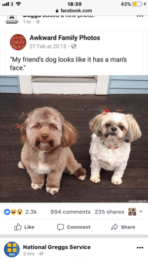 "cocainesocialist:i cant stop thinking about this fucking dog. it's gonna haunt my dreams forever: 18:20  a facebook.com  DOGGO 1 hr  Awkward Family Photos  27 Feb at 20:15.  Family  ""My friend's dog looks like it has a man's  face.""  u/emceegrath  OSsǐ 2.3k  994 comments 235 shares as  山Like  Share  Comment  National Greggs Service  3 hrs.  NGS cocainesocialist:i cant stop thinking about this fucking dog. it's gonna haunt my dreams forever"