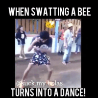 LMAO, its none of my bee's nest why he's dancing like that: WHEN SWATTING A BEE  uck my bolas  TURNS INTO A DANCE! LMAO, its none of my bee's nest why he's dancing like that