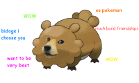 such pokemon: WOW  bidoge  i  choose you  want to be  very best  so pokemon  much build friendships  WOW such pokemon