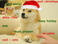 much festive: ery winter  shiba Claus  WOW  much present  coal cate  such christmas  many holiday  So Santa much festive