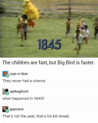He is with the shits: 1845  The children are fast, but Big Bird is faster.  cup-o-fear  They never had a chance  spikeghost  what happened in 1845?  gaycave  That's not the year, that's his kill streak. He is with the shits