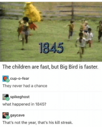 damn I'd love to go to Sonic and snatch some ice cream but I will have a breakdown if I spend one more dollar: 1845  The children are fast, but Big Bird is faster.  cup-o-fear  They never had a chance  spikeghost  what happened in 1845?  gaycave  That's not the year, that's his kill streak. damn I'd love to go to Sonic and snatch some ice cream but I will have a breakdown if I spend one more dollar