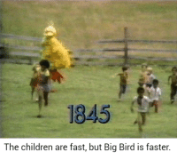 Children, Holocaust, and Big Bird: 1845  The children are fast, but Big Bird is faster. <p>One man Holocaust (xpost Bertstrips)</p>