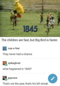 """Children, Memes, and Big Bird: 1845  The children are fast, but Big Bird is faster.  cup-o-fear  They never had a chance  spikeghost  what happened in 1845?  gaycave  That's not the year, that's his kill streak. <p>Big Bird faster via /r/memes <a href=""""https://ift.tt/2KxdK4A"""">https://ift.tt/2KxdK4A</a></p>"""