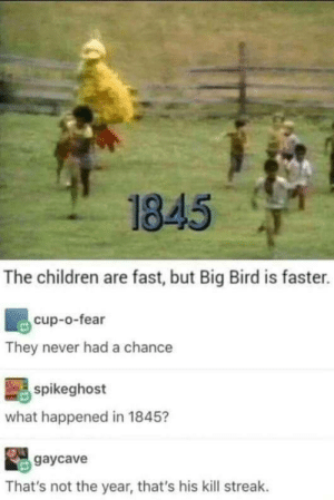 Children, Big Bird, and Fear: 1845  The children are fast, but Big Bird is faster.  cup-o-fear  They never had a chance  spikeghost  what happened in 1845?  gaycave  That's not the year, that's his kill streak. Beware the eight-foot killing machine