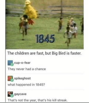 Big birb: 1845  The children are fast, but Big Bird is faster.  cup-o-fear  They never had a chance  spikeghost  what happened in 1845?  gaycave  That's not the year, that's his kill streak. Big birb