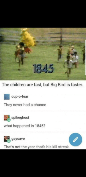 Children, Dank, and Memes: 1845  The children are fast, but Big Bird is faster.  cup-o-fear  They never had a chance  吗spikeghost  what happened in 1845?  gaycave  That's not the year, that's his kill streak. Ahh the nature by TheLehis FOLLOW HERE 4 MORE MEMES.