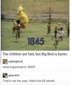 Children, Big Bird, and Big: 1845  The children are fast, but Big Bird is faster.  spikeghost  what happened in 1845?  gaycave  That's not the year, that's his kill streak.