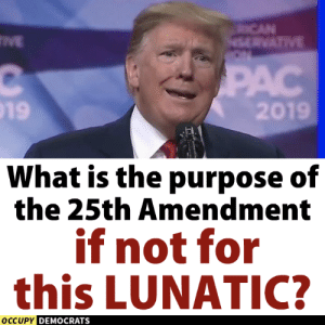 Seriously! #ImpeachTrump  Follow Occupy Democrats for more!: 19  201  What is the purpose of  the 25th Amendment  if not for  this LUNATIC?  OCCUPY  DEMOCRATS Seriously! #ImpeachTrump  Follow Occupy Democrats for more!