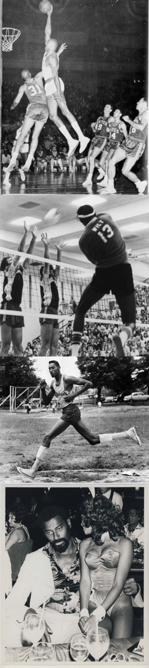 "Wilt The Urban Legend  ◾️ 7'1"" 280 lbs ◾️ 45+ inch vert ◾️ Bench 500 pounds ◾️ 4.6 40-yard dash ◾️ Volleyball Hall of Fame ◾️ 3 x Big 8 High Jump Champion ◾️ Almost fought Muhammad Ali ◾️ 20,000... https://t.co/bhjrFeRW4k: 19   WILT  Whe   then's Wilt The Urban Legend  ◾️ 7'1"" 280 lbs ◾️ 45+ inch vert ◾️ Bench 500 pounds ◾️ 4.6 40-yard dash ◾️ Volleyball Hall of Fame ◾️ 3 x Big 8 High Jump Champion ◾️ Almost fought Muhammad Ali ◾️ 20,000... https://t.co/bhjrFeRW4k"