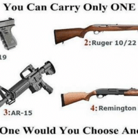 America, Friends, and Memes: 19  You Can Carry Only ONE  2: Ruger 10/22  4: Remington  3:AR-15  One Would You Choose  And . ✅ Double tap the pic ✅ Tag your friends ✅ Check link in my bio for badass stuff - usarmy 2ndamendment soldier navyseals gun flag army operator troops tactical sniper armedforces k9 weapon patriot marine usmc veteran veterans usa america merica american coastguard airman usnavy militarylife military airforce tacticalgunners