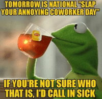 Co Worker Memes: TOMORROMNIS NATIONAL SLAP  YOUR ANNOYING COWORKER DAY  IF YOU'RE NOT SURE WHO  THAT IS, ID CALLIN SICK