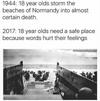Shake my head: 1944: 18 year olds storm the  beaches of Normandy into almost  certain death.  2017: 18 year olds need a safe place  because words hurt their feelings  @theatreofmemes Shake my head