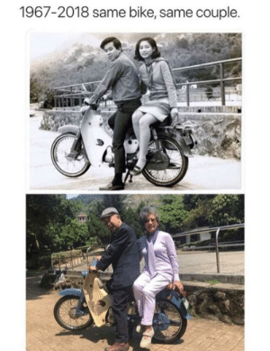 Too Much, Bike, and This: 1967-2018 same bike, same couple. This is too much