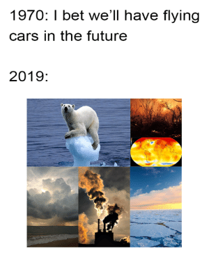 Cars, Future, and Global Warming: 1970: I bet we'll have flying  cars in the future  2019: We need to work against global warming before it's too late