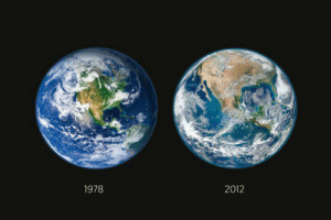 buhmblekid:  runsleepygirl:  walk-barefoot:  veganbaby:  jellybeanjeunet:  sleezysays:   NASA recently released imagery showing the deforestation of America…in just 34 years.  We are killing the Earth  Forever reblog.  Oh wow  THIS HURTS  How long are we going to keep closing our eyes to this? What are we going to do?   we have to fix this before it gets too late: 1978  2012 buhmblekid:  runsleepygirl:  walk-barefoot:  veganbaby:  jellybeanjeunet:  sleezysays:   NASA recently released imagery showing the deforestation of America…in just 34 years.  We are killing the Earth  Forever reblog.  Oh wow  THIS HURTS  How long are we going to keep closing our eyes to this? What are we going to do?   we have to fix this before it gets too late