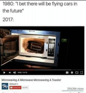 """meirl: 1980: """"I bet there will be flying cars in  the future'""""  2017:  DI 45/14:19  Microwaving A Microwave Microwaving A Toaster  MrBeasta  D Subsaribe  453,909  234,266 views meirl"""