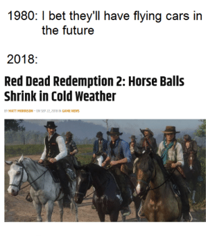 Red Dead 2 is gonna be great by Odd83 MORE MEMES: 1980: I bet they'll have flying cars in  the futuree  2018:  Red Dead Redemption 2: Horse Balls  Shrink in Cold Weather  BY MATT MORRISON-ON SEP 22, 2018 IN GAME NEWS Red Dead 2 is gonna be great by Odd83 MORE MEMES
