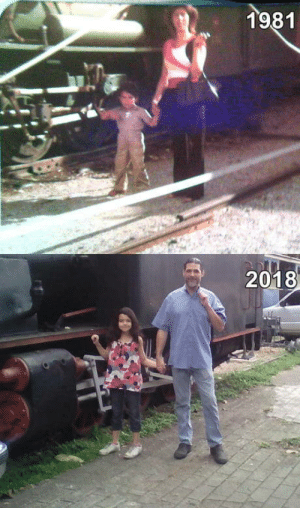 Single, Mother, and Father: 1981  2018 Im a single father, raised by a single mother