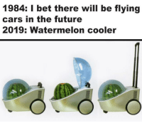 Cars, Future, and I Bet: 1984: I bet there will be flying  cars in the future  2019: Watermelon cooler Its portable too