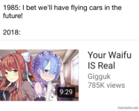 Gigguk: 1985: I bet we'll have flying cars in the  future!  2018:  Your Waifu  IS Real  Gigguk  785K views  9:29