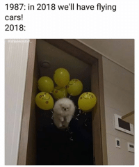 Cars, Ghetto, and Lol: 1987: in 2018 we'll have flying  cars!  2018:  shannondorf Haha lol 😂 -follow @ghetto for best memes!💯