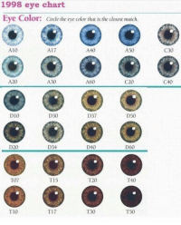 T20 but i wish i was C30 :(: 1998 eye chart  Eye Color: Circle the eye color that is the closest match  A10  A40  A50  A17  A20  A60  C20  A30  D50  D37  D10  D30  D20  D34  D60  D40  T07  T20  T40  T15  T10  T30  T50  T17  C30  C40 T20 but i wish i was C30 :(