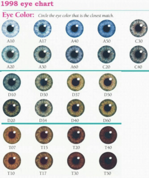 theonlyconsultingtimelady:  vashiane:  Natural Eye Color Chart  tag your eye color : 1998 eye chart  Eye Color: Circle the eye color that is the closest match.  A10  A17  A40  A50  C30  A20  A30  A60  C20  C40  D10  D30  D37  D50  O 0  D20  D34  D40  D60  T07  T15  T20  T40  T10  T17  T30  T50 theonlyconsultingtimelady:  vashiane:  Natural Eye Color Chart  tag your eye color