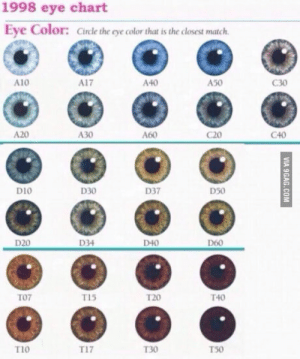 Which ones do you have? I have close to T10.: 1998 eye chart  Eye Color: Cirle the eye color that is the closest match  A10  A17  A40  A50  G30  A20  A30  A60  C20  C40  D10  D30  D37  D50  D20  D34  D40  D60  TO7  T15  T20  T40  T1o  T17  130  T50 Which ones do you have? I have close to T10.